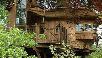 Tree House Design A Fairy Tale