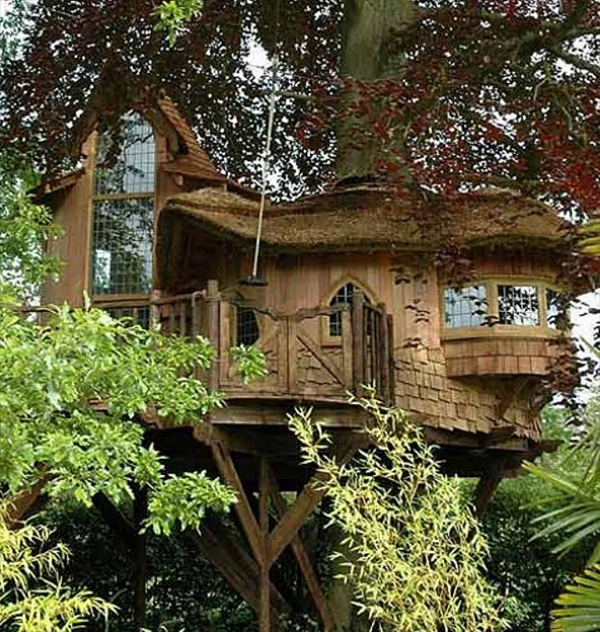 tree house design a fairy tale home with design